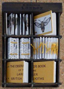 Elizabeth Shorrock - Observer Book of Moths