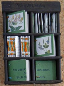 Elizabeth Shorrock - Observer Book of Wild Flowers