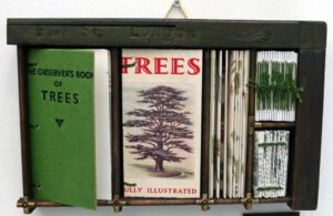 Elizabeth Shorrock artist - The Observer Book of Trees